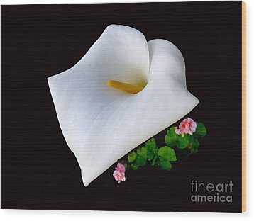 Colombian Calla Lily Wood Print