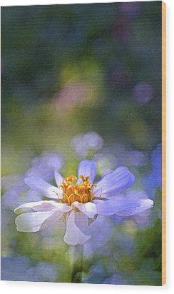 Color 121 Wood Print by Pamela Cooper