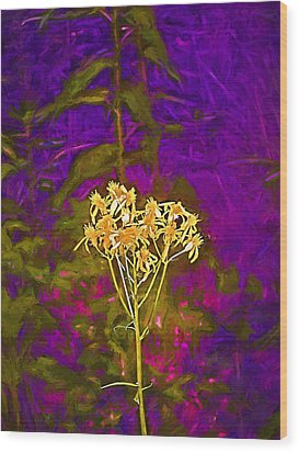 Wood Print featuring the photograph Color 5 by Pamela Cooper