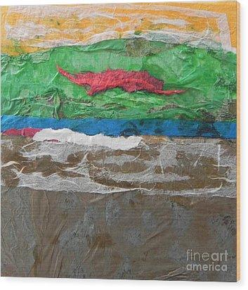 Color 6 Wood Print