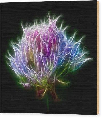 Color Burst Wood Print by Adam Romanowicz