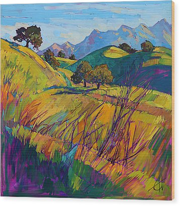 Color Curves Wood Print by Erin Hanson