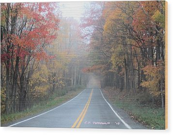 Color In The Country Wood Print by Carolyn Postelwait