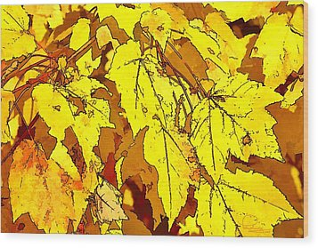 Color Of Fall Wood Print