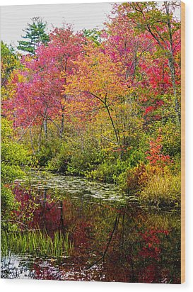 Wood Print featuring the photograph Color On The Water by Mike Ste Marie