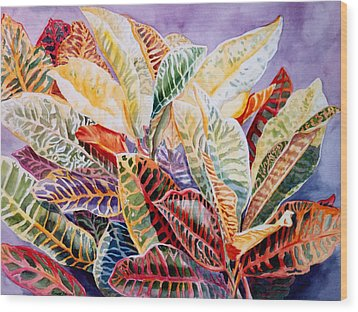 Color Patterns - Crotons Wood Print