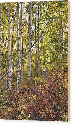 Wood Print featuring the photograph Colorado Changing Eight    by Eric Rundle