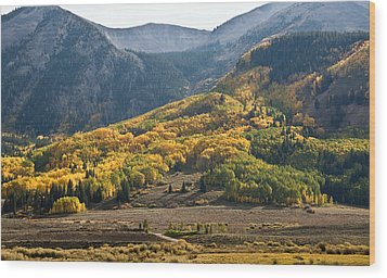Wood Print featuring the photograph Colorado Changing Eleven   by Eric Rundle