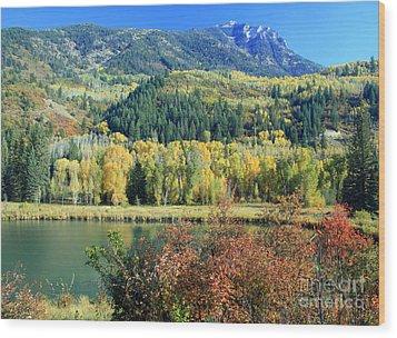 Colorado Colors Wood Print by Bob Hislop