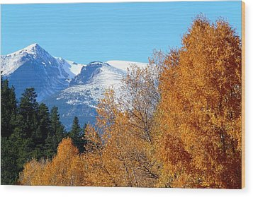 Colorado Mountains In Autumn Wood Print