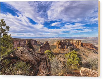 Colorado National Monument View Wood Print by John McArthur