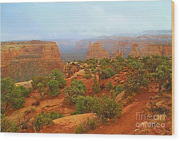Colorado Natl Monument Snow Coming Down The Canyon Wood Print