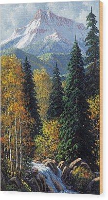 Colorado Wood Print by Randy Follis
