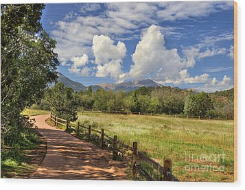 Colorado Scenic Pathway Wood Print