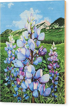 Colorado Summer Blues Wood Print by Barbara Jewell