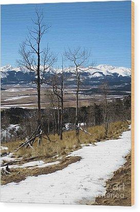 Colorado Trail 1 Wood Print by Claudette Bujold-Poirier