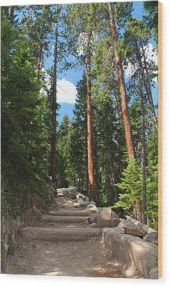 Colorado Trail Wood Print