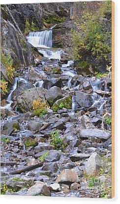 Colorado Waterfall Mountain Stream Wood Print by Andrea Hazel Ihlefeld
