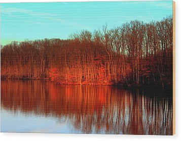 Colorful Afternoon Wood Print by Jose Lopez