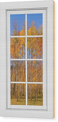 Colorful Aspen Tree View White Window Wood Print by James BO  Insogna