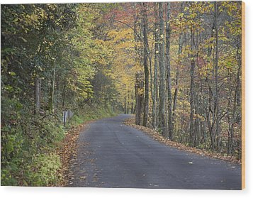 Wood Print featuring the photograph Colorful Backroads by Robert Camp