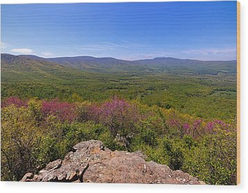 Colorful Blue Ridge Spring Wood Print by Rachel Cohen