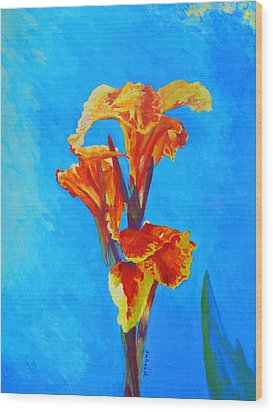 Colorful Canna Wood Print by Margaret Saheed