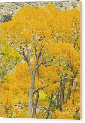 Colorful Canopy Wood Print