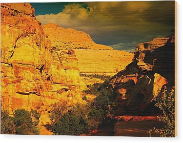 Colorful Capital Reef Wood Print by Jeff Swan