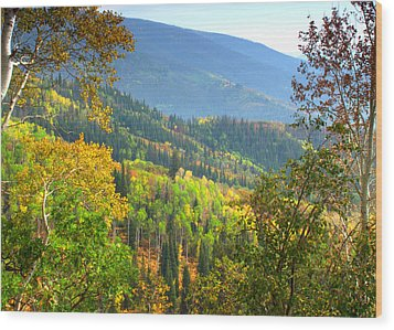 Colorful Colorado Wood Print by Brian Harig