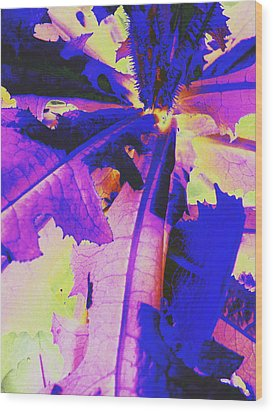 Wood Print featuring the photograph Colorful Disguise  by Diane Miller