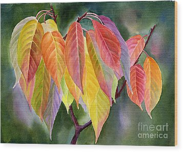 Colorful Fall Leaves With Background Wood Print by Sharon Freeman