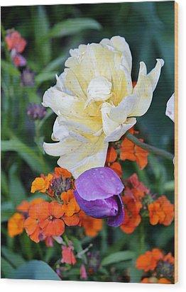 Colorful Flowers Wood Print by Cynthia Guinn