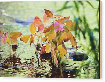Colorful Leaves Wood Print