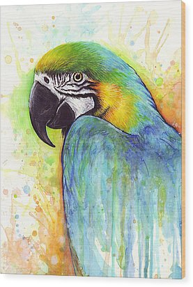 Macaw Painting Wood Print