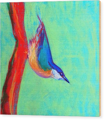 Colorful Nuthatch Bird Wood Print