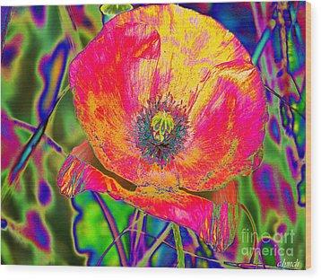 Colorful Poppy Wood Print by Carol Lynch