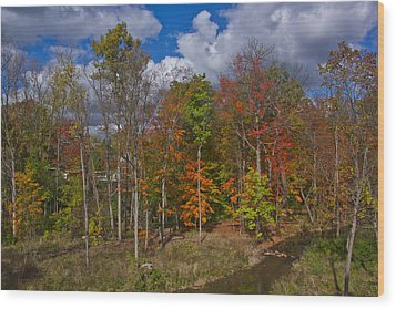 Colorful Ravine A Wider Angle Wood Print