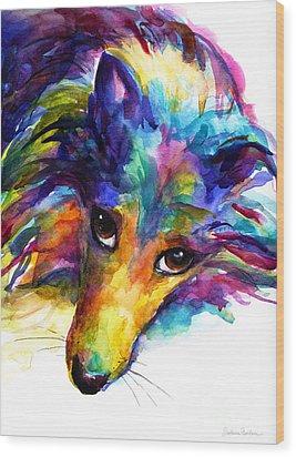Colorful Sheltie Dog Portrait Wood Print