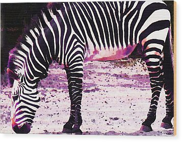 Colorful Zebra 2 - Buy Black And White Stripes Art Wood Print by Sharon Cummings