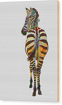 Colorful Zebra Wood Print