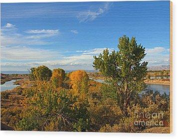 Colors Along The Colorado Wood Print by Bob Hislop