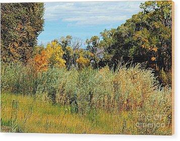 Colors Along The Gunnison Wood Print by Bob Hislop