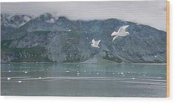 Colors Of Alaska - Glacier Bay Wood Print
