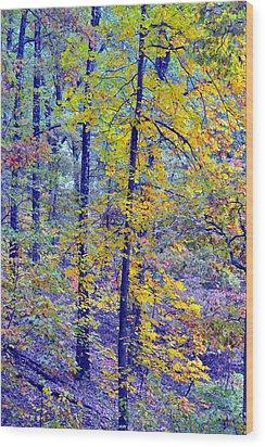 Colors Of Autumn Wood Print
