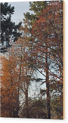 Colors Of Autumn Wood Print by Tikvah's Hope