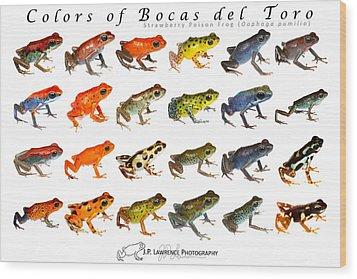 Colors Of Bocas Del Toro Wood Print by JP Lawrence