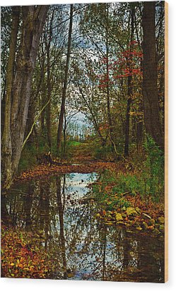 Colors Of Fall Wood Print by Kristi Swift