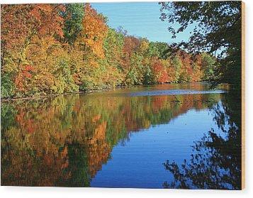 Colors Of Fall Wood Print by Susan  McMenamin