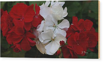 Colors Of Flowers Wood Print by James C Thomas